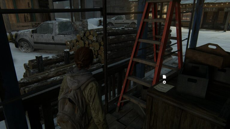 Artifact Volunteer request on the crate in The Last of Us 2
