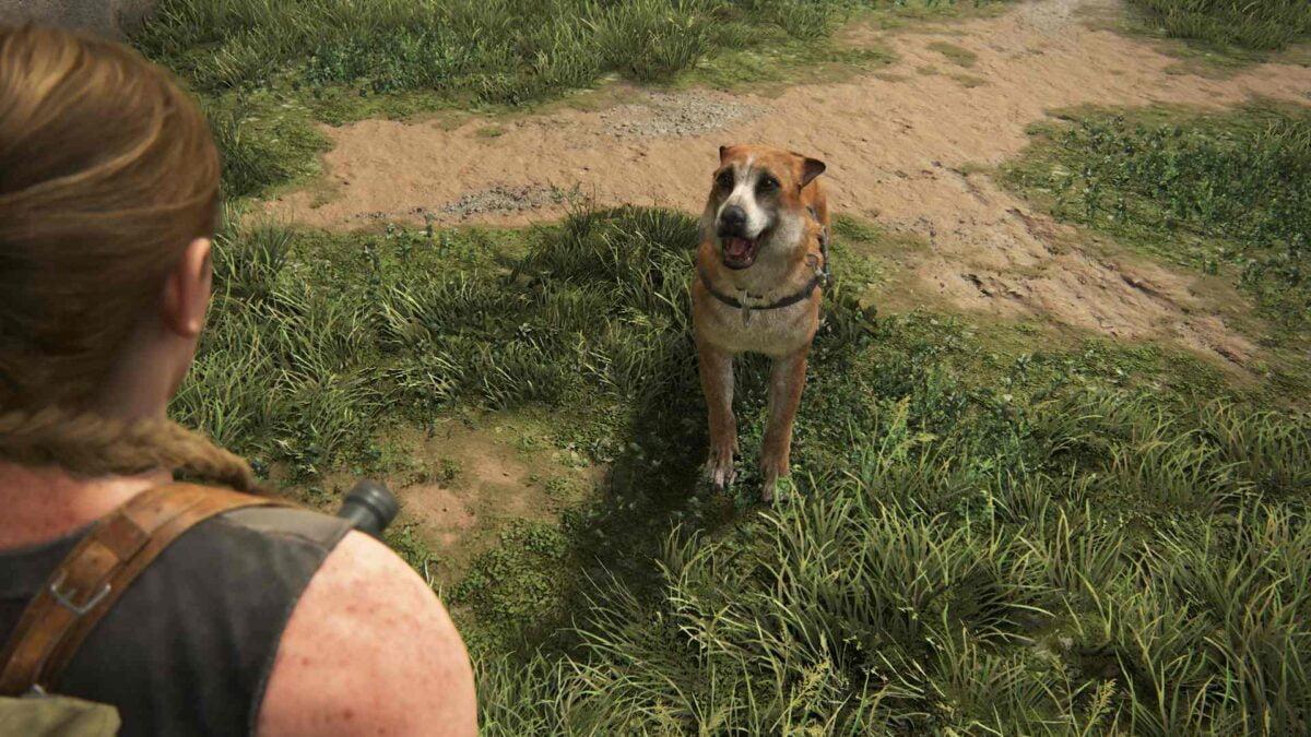 Schäferhund Bear will in The Last of Us 2 mit Abby Ball spielen.
