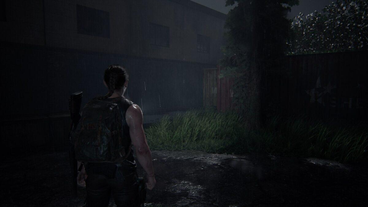 Abby steht in The Last of Us 2 vor einem roten Frachtcontainer.