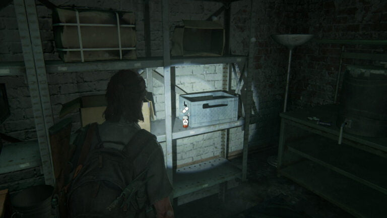 6 Zusätze auf dem Regal hinten links im Keller von Rosemont in The Last of Us 2