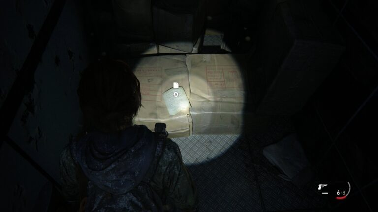 Location artifact Supermarket apology in The Last of Us 2