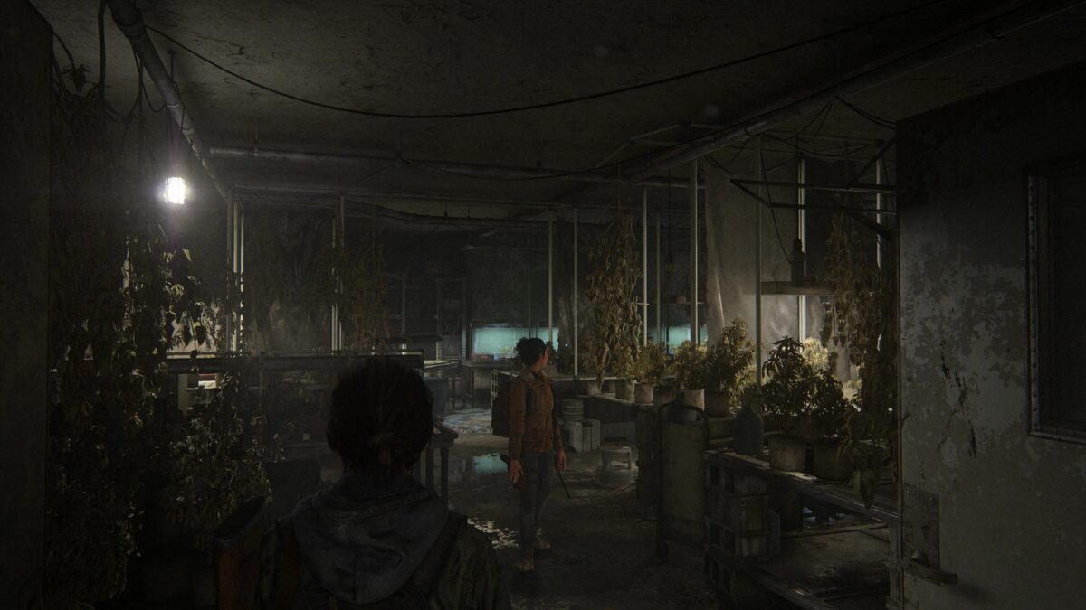 The weed plantation in the basement of the library in The Last of Us 2