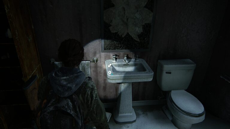 Supplements on a skin in The Last of Us 2