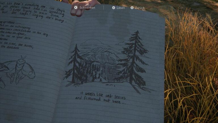 Tagebucheintrag Ausblick im Wald in The Last of Us 2.