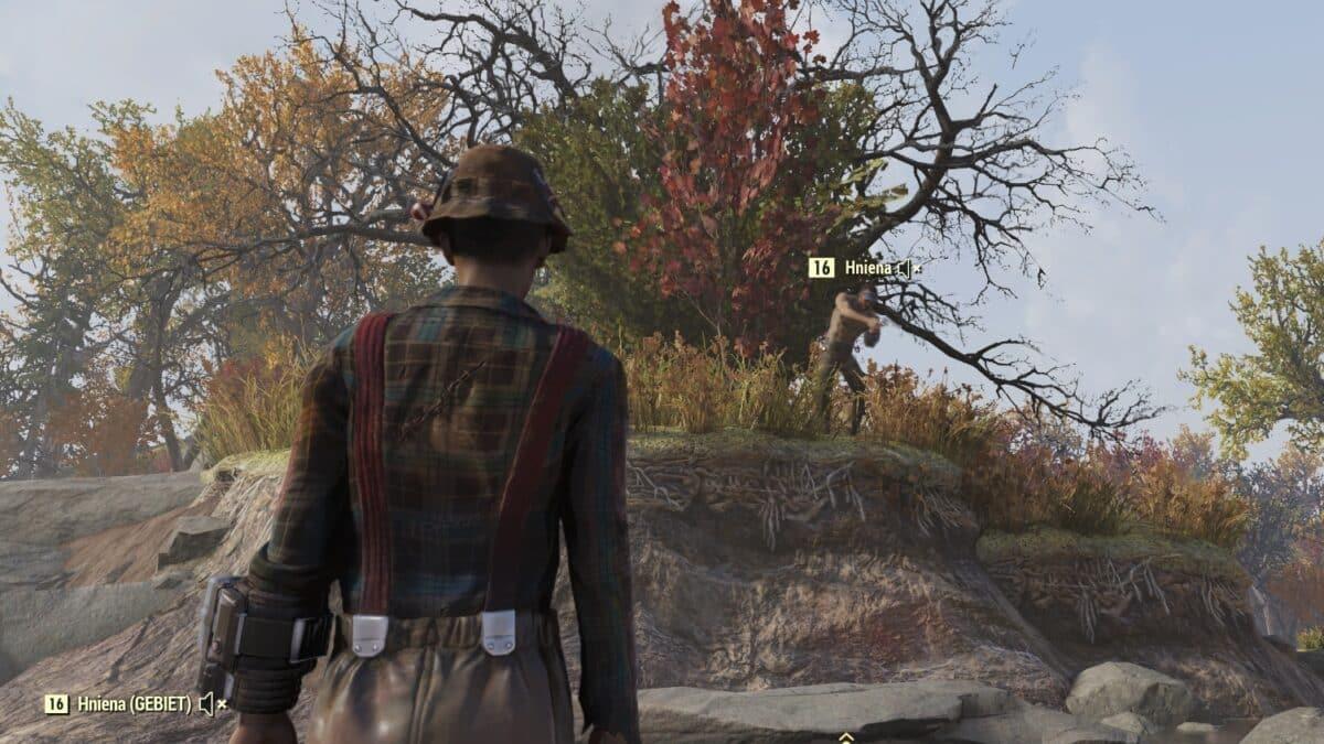 Auf der Suche nach einer Fallout 76 Teerbeere erhalte ich Begleitung.