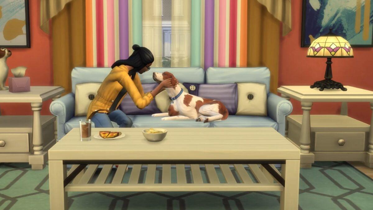 Frau verwöhnt ihren Hund auf Couch