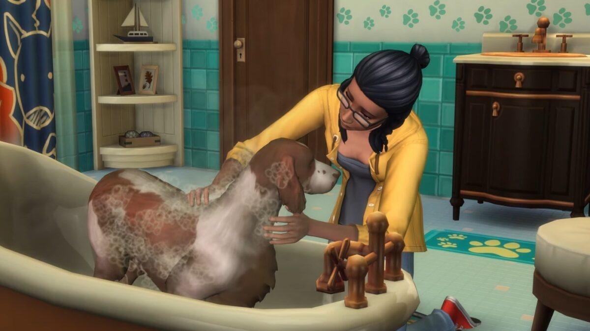 Frau wäscht Hund in Badewanne
