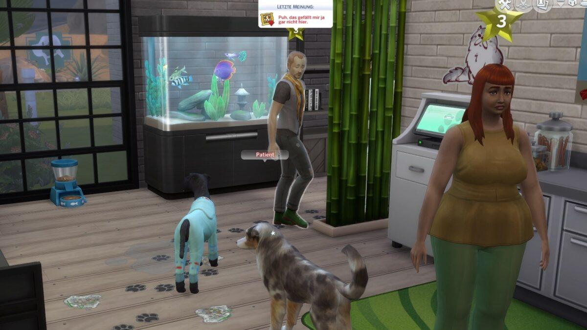 Tierbesitzer bewertet schmutziges Wartezimmer kritisch