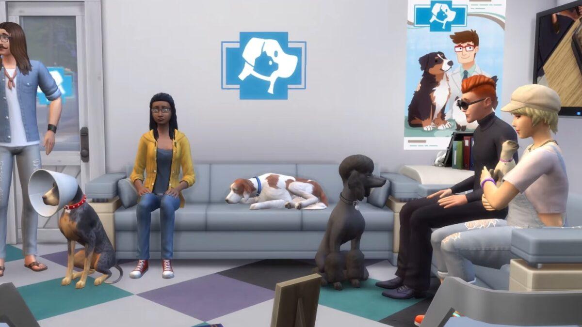Mehrere Tierbesitzer mit Tieren im Tierarzt-Wartezimmer
