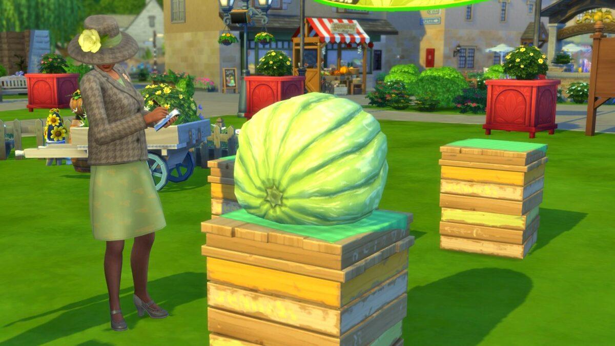 Sims 4 Landhaus-Leben Guide Riesenkürbis auf Podest bei Wettbewerb