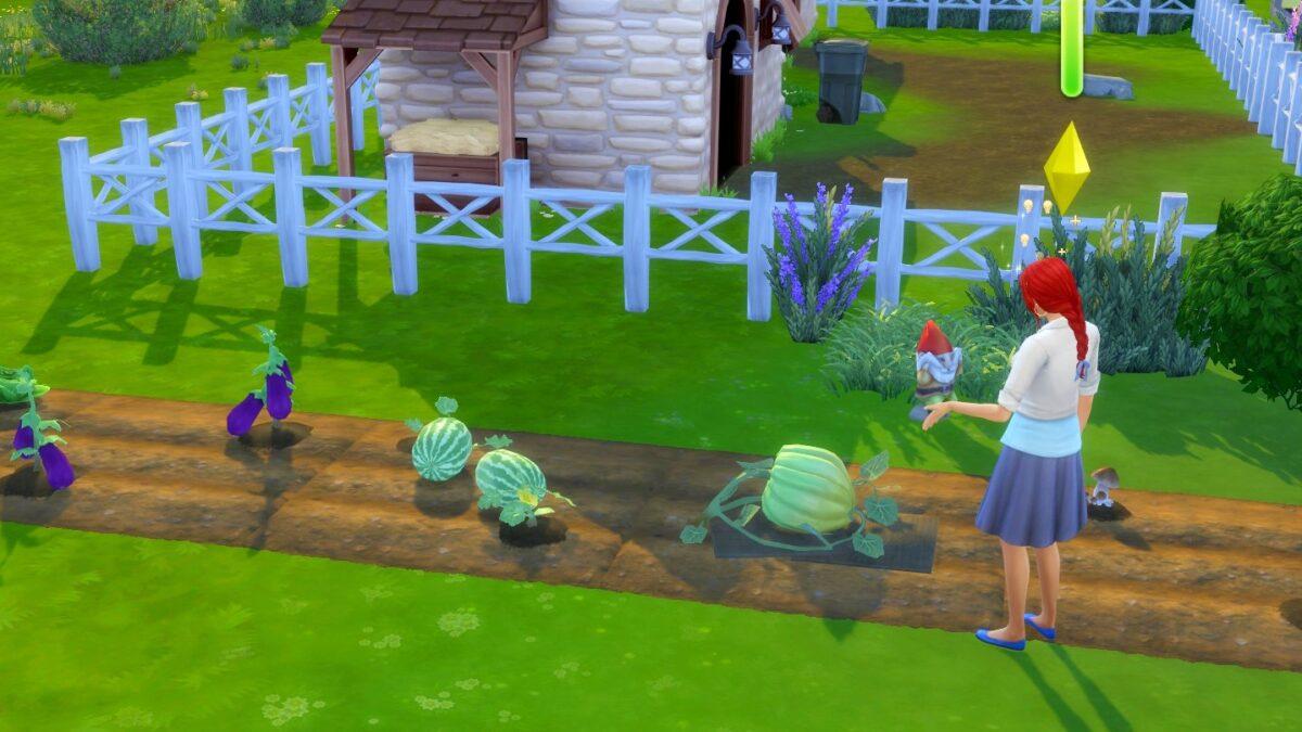 Sims 4 Landhaus-Leben Guide Sim-Frau spricht mit riesigem Kürbis auf Beet
