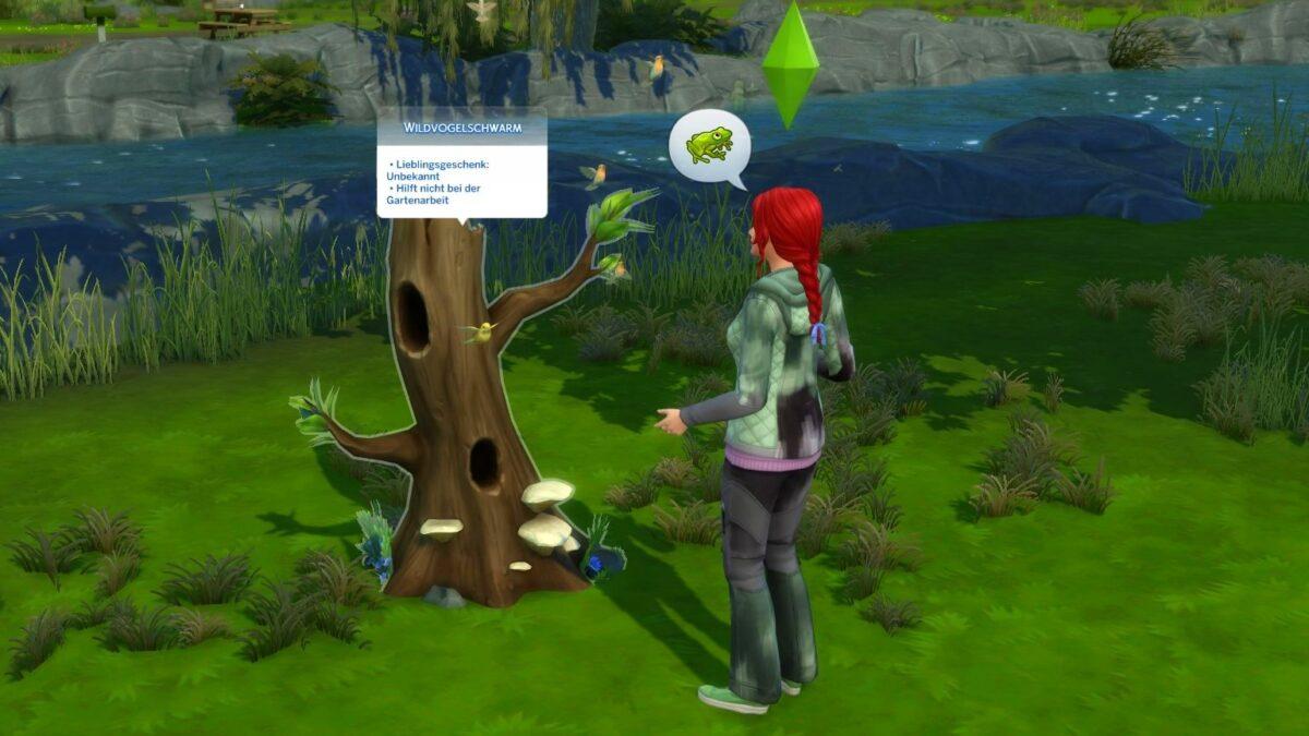 Sims 4 Landhaus-Leben Guide Sim-Frau spricht mit Vögeln in einem hohlen Baumstamm