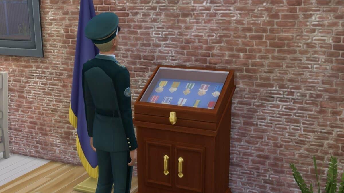 Sim-Offizier bewundert seine Ordenssammlung