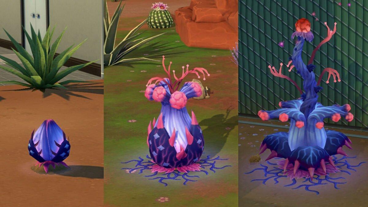 Sims 4 StrangerVille Alien-Pflanze in drei Entwicklungsstadien von Knospe zu Pflanze